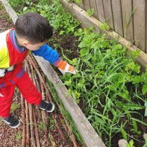 Tiggers Nurseries Gallery 31.jpg