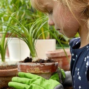 Tiggers Nurseries Gallery 41.jpg